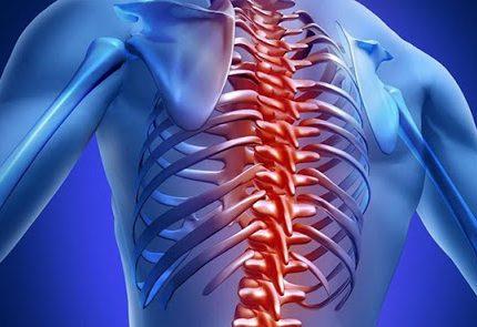 disfunzioni-spinali-e-allenamento-della-forza-2_5fa6b2c397788